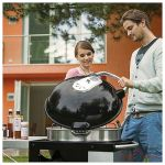 Napoleon Grill Charcoal PRO22K-CART-2